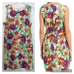 NWT Gibson Latimer floral shift dress w/ stretch